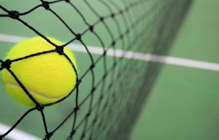 טניס - ליגת טניס